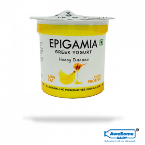 Epigamia Yoghurt - Honey Banana 90gm Online In Mumbai