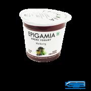 awesome-dairy-epigamia-greek-yogurt-mulberry-90-gm-image-1